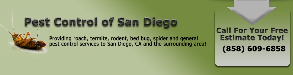 Pest Control for San Diego, California